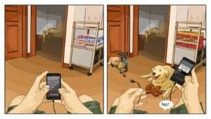 canine illustrations